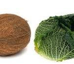 Tout savoir : Témoignage régime paléolithique et régime paléo et aliment comparaison