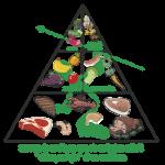 Tout savoir : Aliments du regime paleo et regime paleo diet témoignage